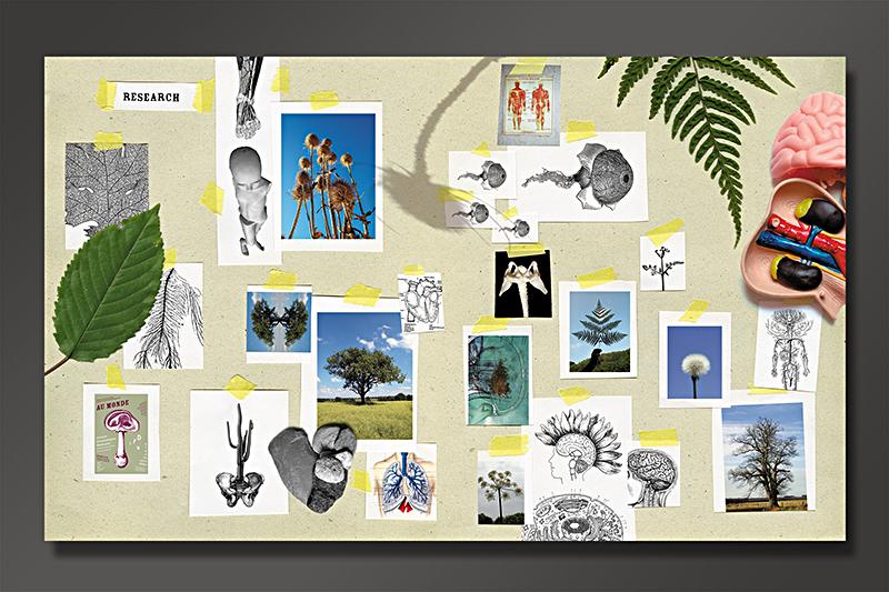 CDN Identité visuelle 2003-04