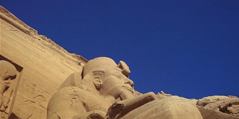Dr. Pêche - Egypte